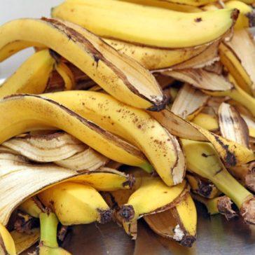 6 استخدامات مهمة لقشر الموز ماتخطرش على بالك!